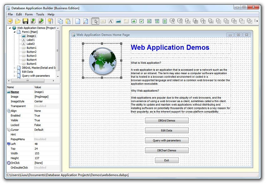 database application